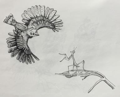 sketchbook-19