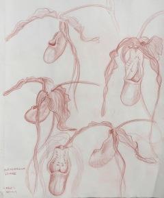sketchbook-28