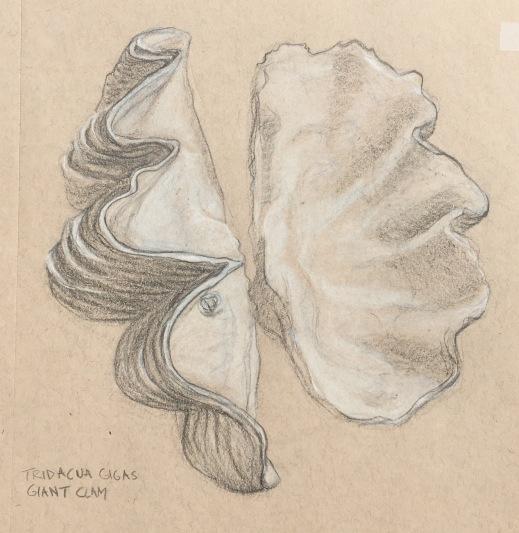sketchbook-44