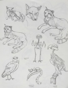 sketchbook-6